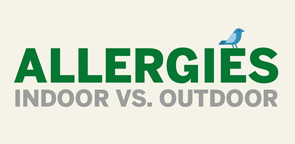 Know Your Allergens: Indoor vs. Outdoor