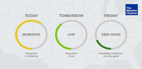 Weather Channel Allergy Forecast
